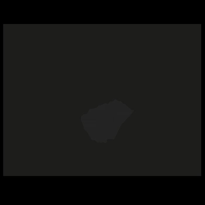 Laurel Selección Festival De Cine Y Television Reino De Leon